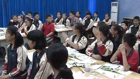浙美版六年级美术下册《竹》教学视频,2014年优质课
