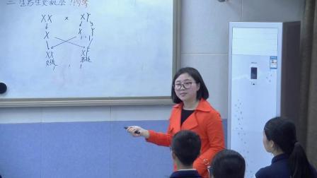 初中生物人教版八下《7.2 人的性别遗传》湖南郑荷