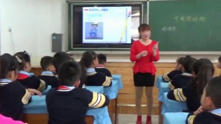 小学道德与法治部编版一下《第7课 可爱的动物》河北王红革