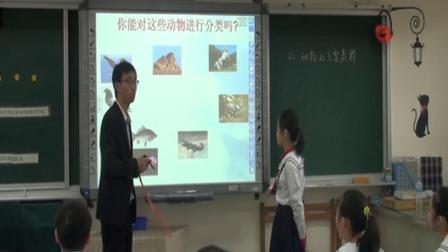 华师大版科学七上2.1《动物的主要类群》课堂教学视频实录-黄晓峰