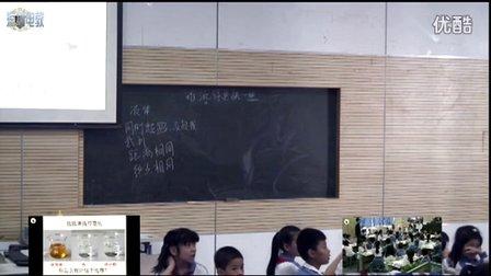 深圳2015优质课《谁流的更快些》教科版科学四下,深圳小学:黄柏涛