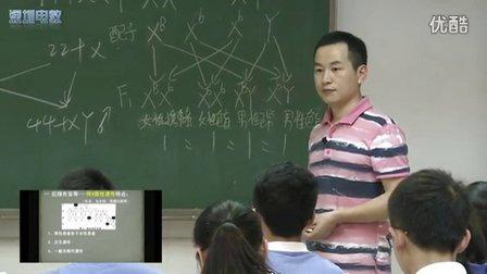 深圳2015优质课《伴性遗传》人教版高一生物,平冈中学:王强
