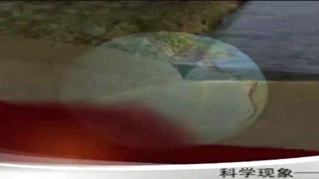 小学五年级科学《小课桌大灾难》微课视频,深圳市小学科学微课大赛视频