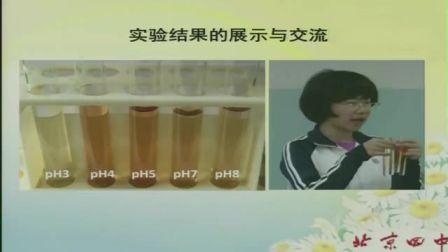 中学生物高一《用比色法探究pH对酶活性的影响》说课 北京张瑾(北京市首届中小学青年教师教学说课大赛)