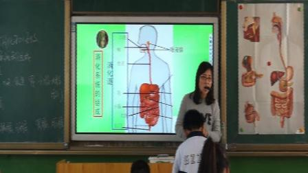 人教2011课标版生物七下-4.2.2《消化和吸收》教学视频实录-张华
