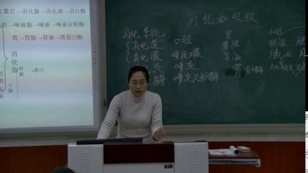 人教2011课标版生物七下-4.2.2《消化和吸收》教学视频实录-王云霄