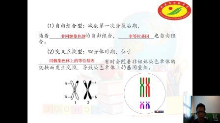《基因重组》高一生物-延安市实验中学-陈小军-陕西省首届微课大赛