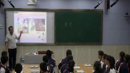 人教2011课标版生物七下-4.3.1《呼吸道对空气的处理》教学视频实录-欧启行