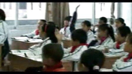 《电脑网络——我的新伙伴》优质课(北师大版品德与社会四下:颜秀曼)