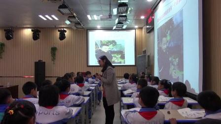 小学道德与法治部编版一下《第7课 可爱的动物》贵州李尚兰