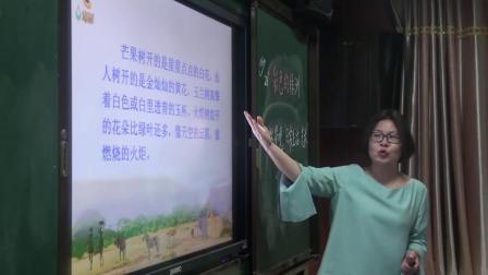 《28- 彩色的非洲》人教版小学语文五下课堂实录-湖南湘潭市-宾咏荷