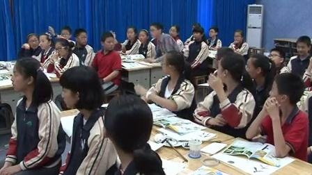 浙美版美术六下第10课《竹》课堂教学视频实录-聂丹宇