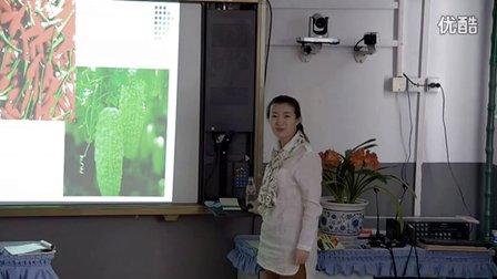 初中美术人教版七年级第1课《色彩的魅力》黑龙江张玲