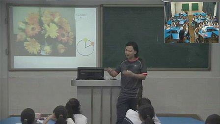 《我们的调色板》初中八年级美术优质课视频-深圳-窦凡懿