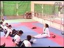 高一体育优质课《跆拳道》_时老师