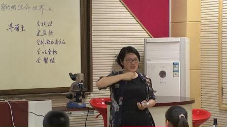 教科版小学科学六下《用显微镜观察身边的生命世界》课堂教学视频实录-李玲玲