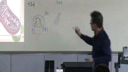 2015年江苏省高中生物优课评比《细胞器》教学视频,王磊