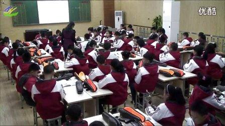 五年级音乐《葫芦丝》教学视频,王玉慧