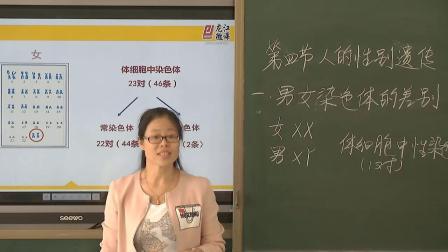 初中生物人教版八下《7.2 人的性别遗传》黑龙江郭琳