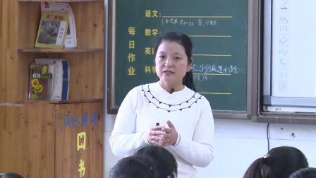 华师大版科学八下4.1《自然界的电现象》课堂教学视频实录-王美蓉