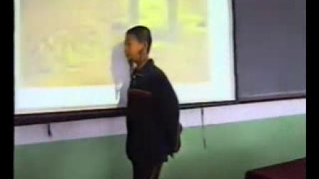 《思想的活跃与百家争鸣》北师大版历史八年级-刘应洁